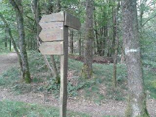 chemins de randonnée - Copie