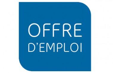 Logo emploi 380x245